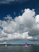 Cumulus mediocris clouds over the English Channel