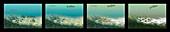Stages of oxygen depletion in the oceans, illustration