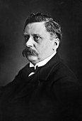 Alfred Werner, Swiss inorganic chemist