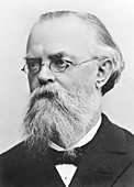 Gustav Zeuner, German physicist and engineer