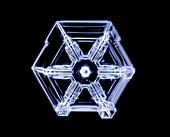 Skeletal form snowflake, light micrograph