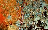 Deforestation in Bolivia, satellite image