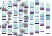 Bioinformatics, conceptual illustration