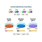 Acid-base neutralization reaction, illustration