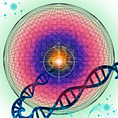 Targeted gene therapy, conceptual illustration
