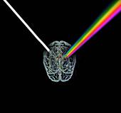 Brain refracting light,illustration