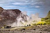 Whakaari volcano tour group,New Zealand