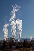 Plasterboard factory,Colorado,USA