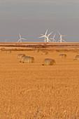 Windfarm,Colorado,USA