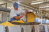 Cheese factory, Wisconsin, USA