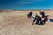 Mars Desert Research Station, Utah, USA