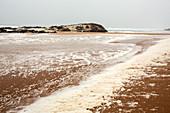 Sea foam during gale force winds