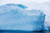 Icebergs off Anvers Island,Antarctica
