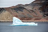 Adelie penguin colony,Paulet Island,Antarctica