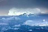 Icebergs filling Nordvestfjord,Greenland