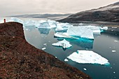 Icebergs stranded at Rodeo (Red Island)