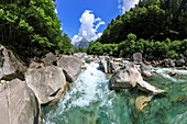Mountain torrent in the Swiss Alps