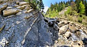 Layered flysch sediments