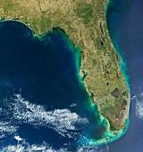 Red tide algal bloom along the Florida coastline