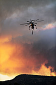 Helicopter fighting wildfire,Yosemite National Park,USA