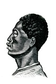 Ethiopian man,19th Century illustration