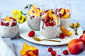 Coconut milk chia pudding with nectarines and raspberries