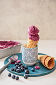 Homemade blueberry ice cream in cone