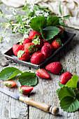 Stilleben mit frischen Erdbeeren