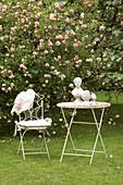 Nostalgischer Sitzplatz vor Strauchrose im Garten