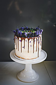 Vanilla sponge cake with blackberries and lavender