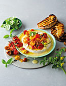 Fennel-roasted tomatoes with baked camembert