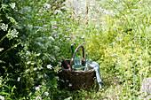 Korb zwischen Wiesenblumen im Naturgarten