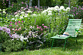 Liege am Beet mit Ballhortensie 'Annabelle', Flammenblumen, Scheinsonnenhut 'Butterfly Kisses', Katzenminze und Gras