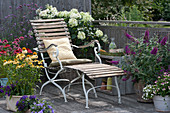 Balkon mit Sonnenhut Conetto 'Banana' 'Raspberry' 'Butterfly Kisses', Strauchhortensie, Eisenkraut, Sommerflieder, Liegestuhl