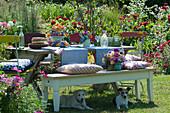 Etagere mit bunten Blüten und Aprikosen als Tischdeko, Hunde liegen im Schatten unter Bank