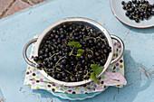 Frisch gepflückte schwarze Johannisbeeren im Küchensieb
