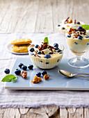 Yoghurt and blueberry dessert with vanilla yoghurt