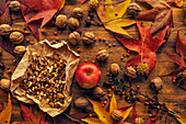 Autumn,conceptual image