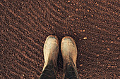 Farmer's rubber boots on ploughed arable land