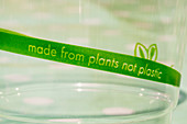 Disposable cup made from plants
