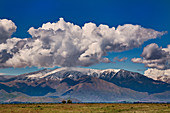 Cumulus humilis clouds over New Zealand mountains