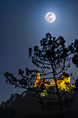 Supermoon over Pena Palace, Portugal
