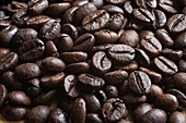 Coffee beans, focus stacked image