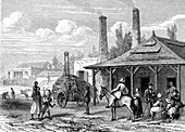 Sugar industry, 19th century