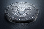 US one dollar coin