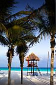 Hut on the beach amongst palm trees