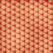 Lattice of copper atoms, scanning tunelling micrograph