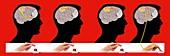 Motor cortex brain pathways, illustration
