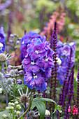 Violette Kombination mit Rittersporn und Steppensalbei