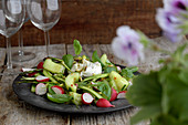 Cucumber salad with radishes, asparagus and burrata